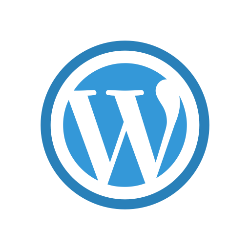 Plug-in Finteza pour Wordpress